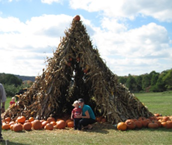 Corn Stalk Teepee & Hay Fort